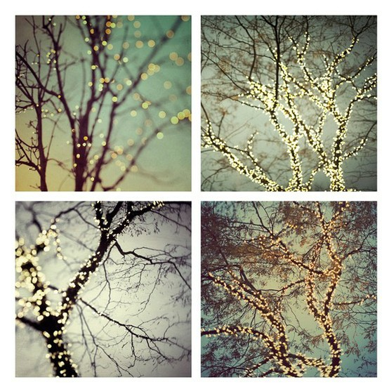 Decorating the trees glitter inc glitter inc - Tree branches with lights ...
