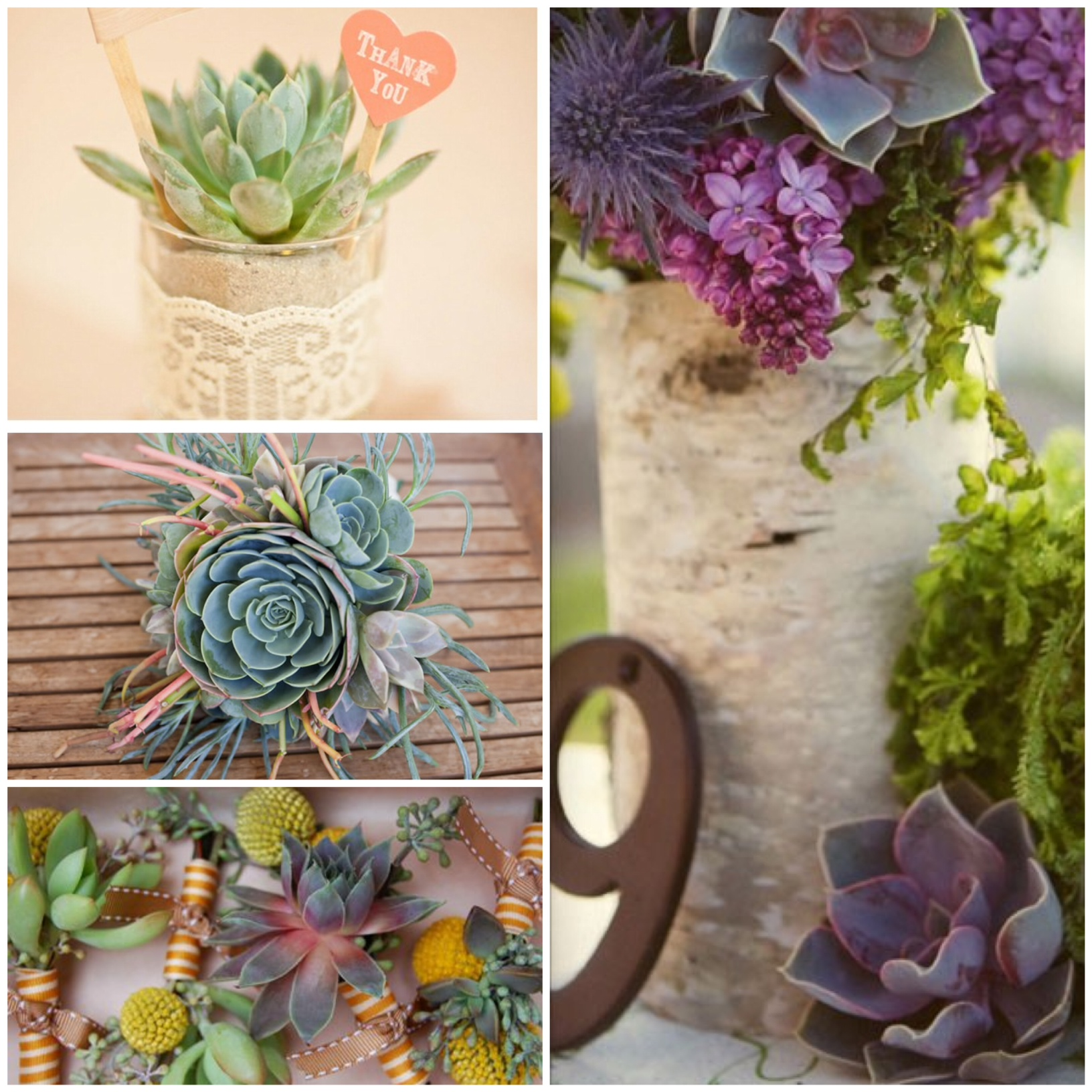 How to Use Succulents in a Wedding | glitterinc.com