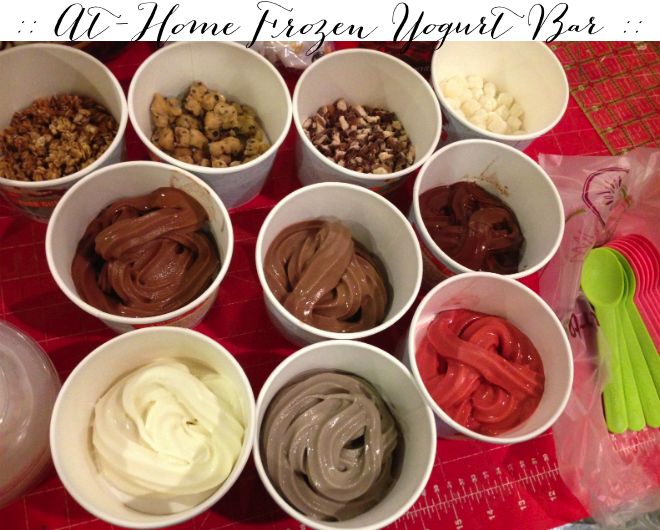 at home frozen yogurt bar _ glitterinc.com