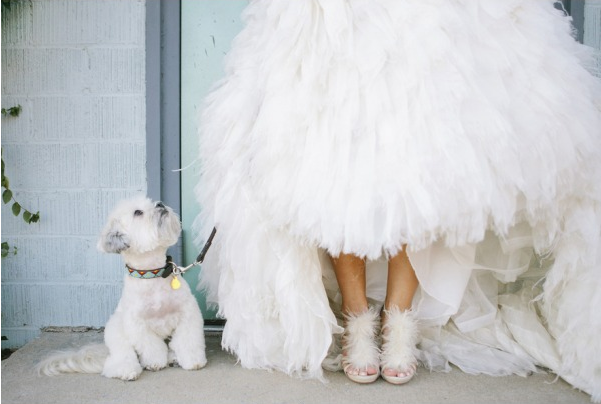monique lhuillier dress and badgley mischka shoes feathers white wedding