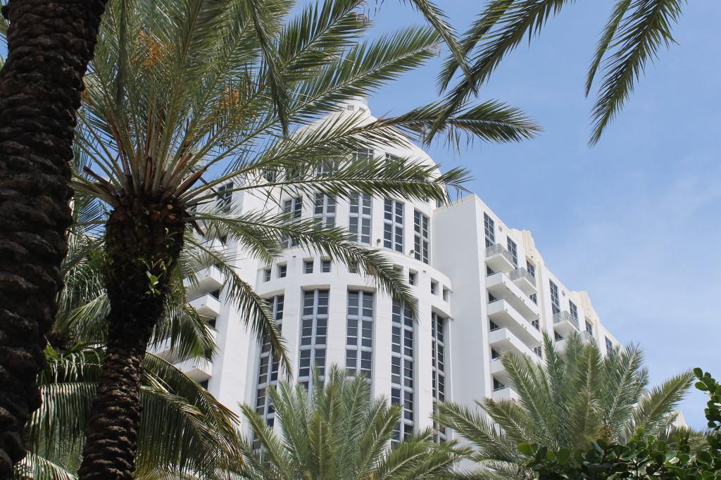 Loews Hotel Miami Beach palm trees view weekend birthday surprise _ glitterinc.com