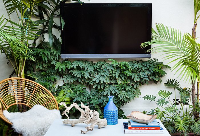 plants Katie Tarses bohemian design Spanish-Style Hollywood Hills Home
