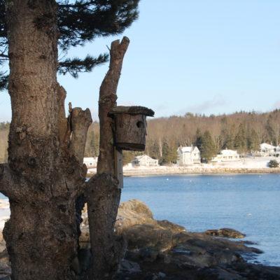 Winter Vacation Recap: Maine