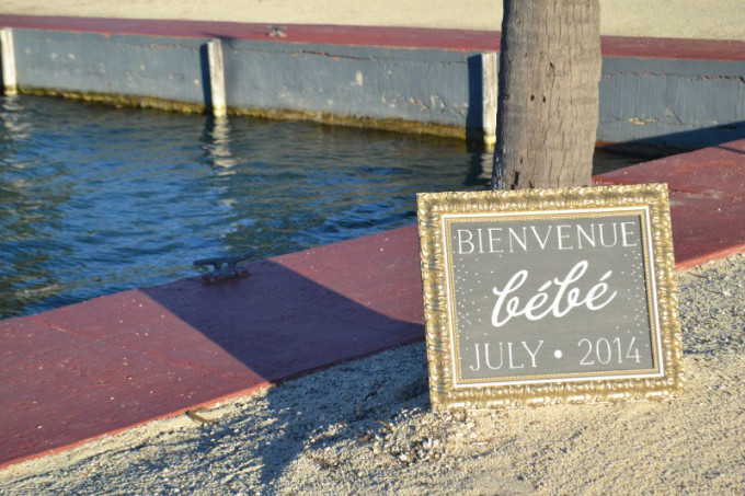 Bienvenue-Bebe-July-2014---Glitter,-Inc.-Pregnancy-Announcement---glitterinc.com