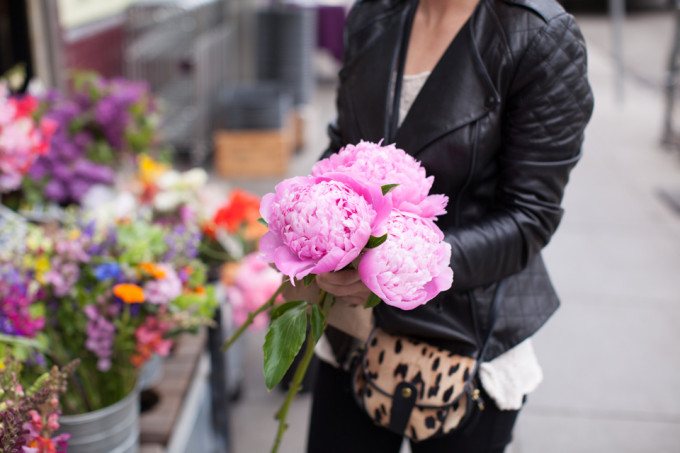 flowers-hydrangeas-cheetah-is-the-new-black-leather-jacket-san-francisco-00