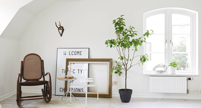 white apartment greens living room