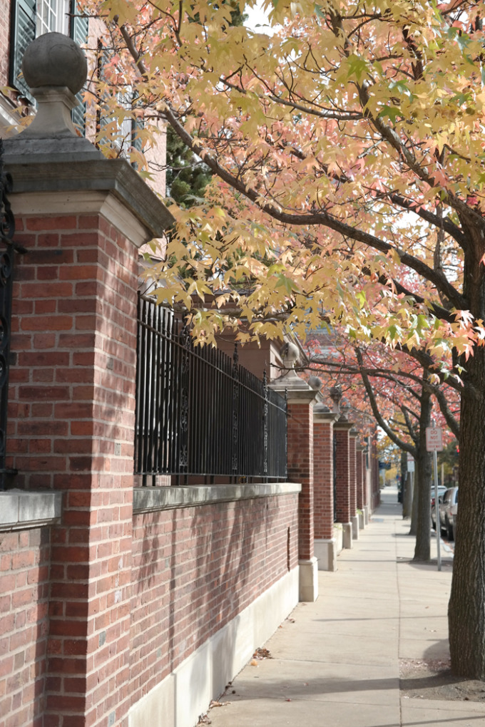 New-Haven-Fall-tree-lined-street---glitterinc.com