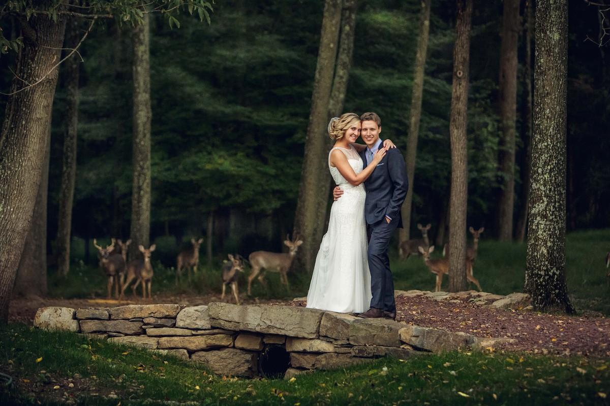 deer wedding photo photobomb