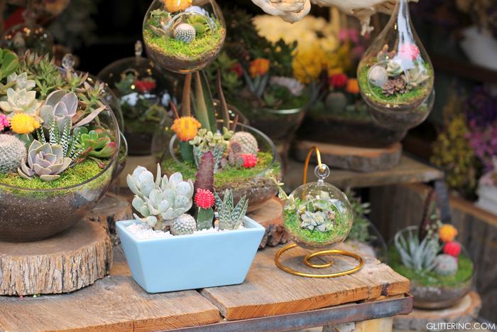LA-Farmers-Market-Succulents---glitterinc.com