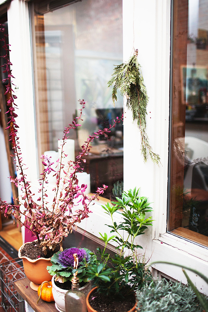 Patio---plants---bohemian-apartment