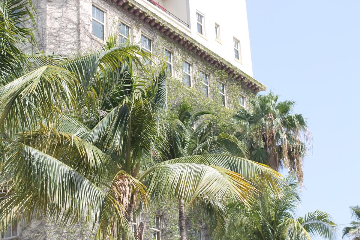 Lincoln-Road---Miami-Beach---glitterinc.com