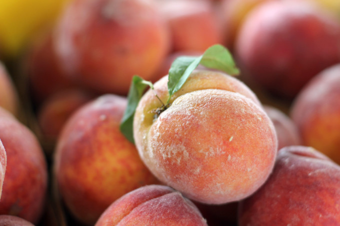 north-carolina-farmers-market-peaches---glitterinc.com