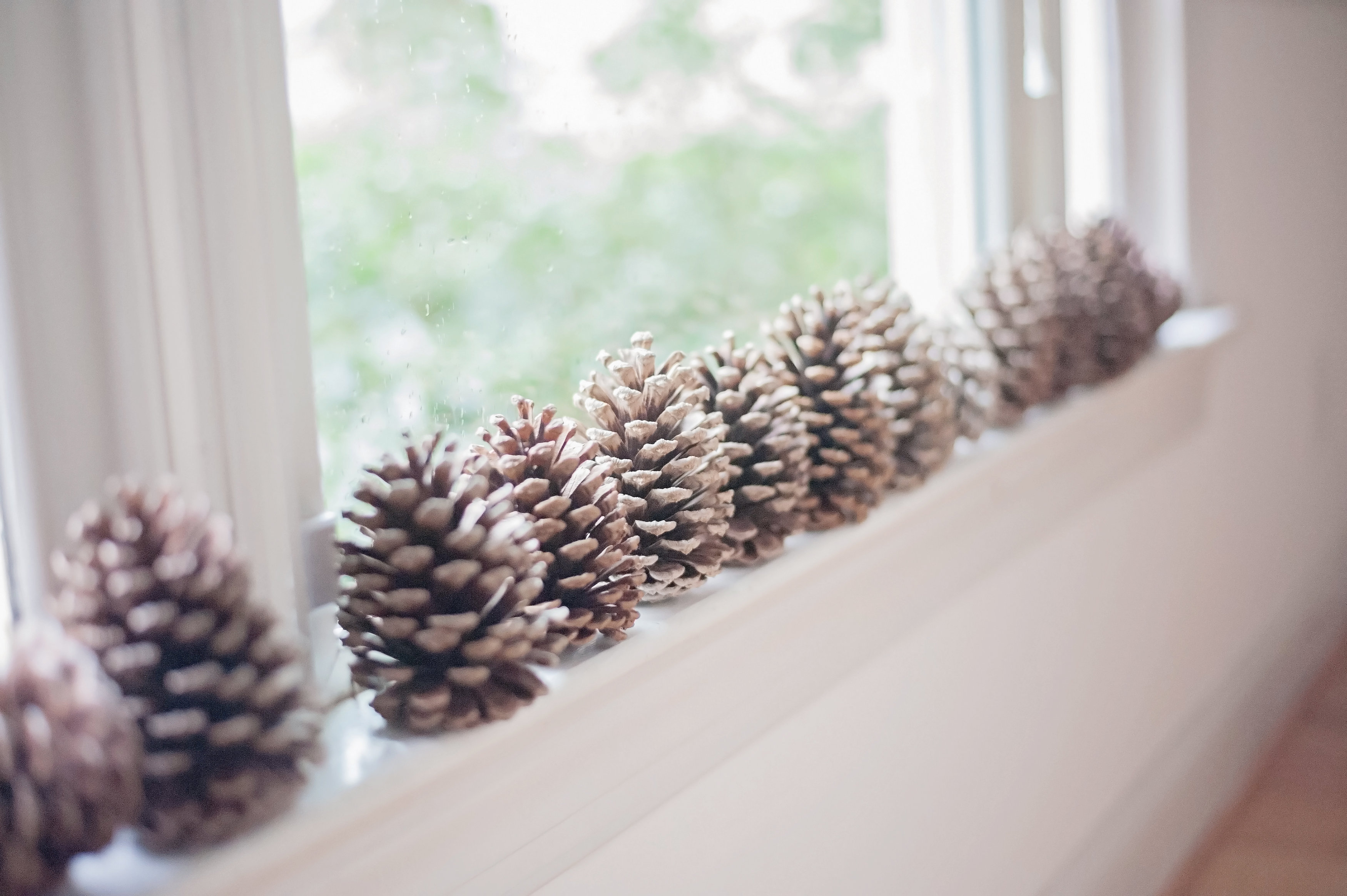 Winter Wonderland Dining Room Tour - pinecones on the window