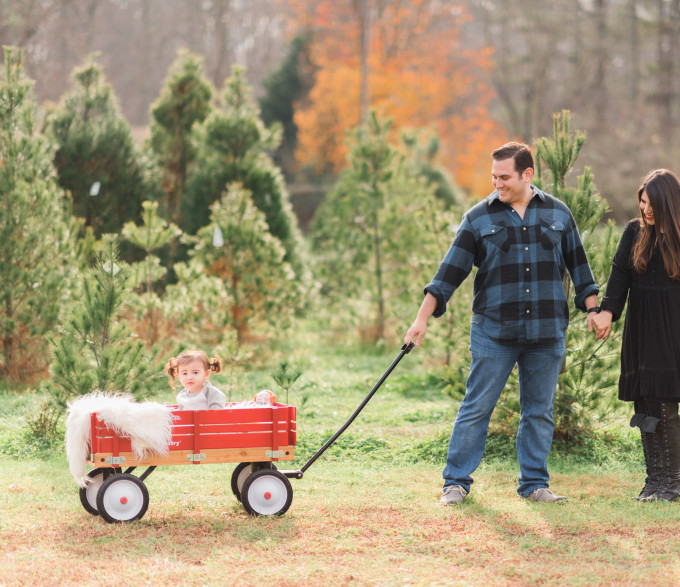 Holiday Family Photo Shoot - Christmas Tree Farm (Plus, how to survive a shoot with kids!)