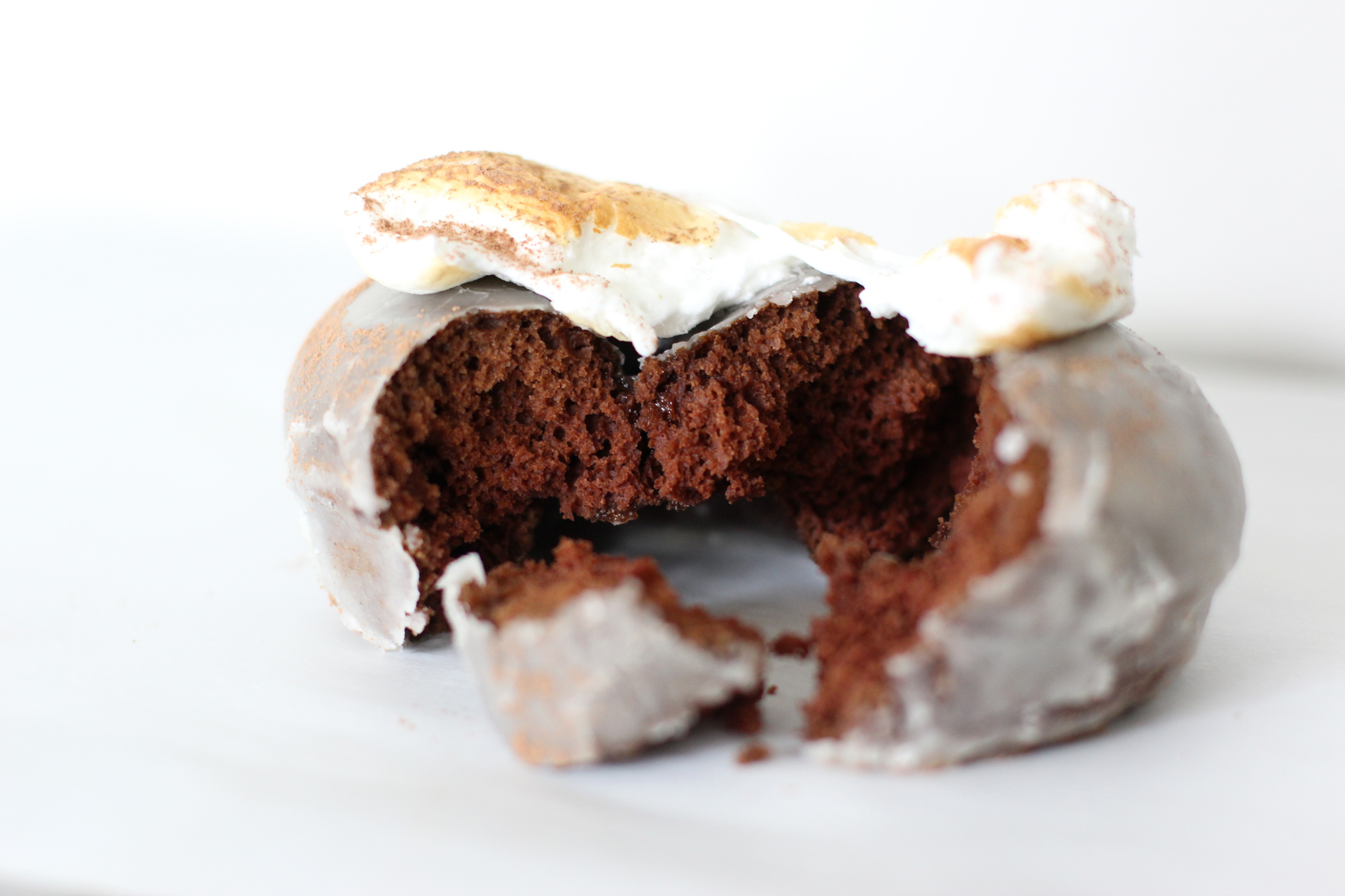 Hot Chocolate Donuts with Toasted Marshmallows (These are incredible! Just sayin'.)