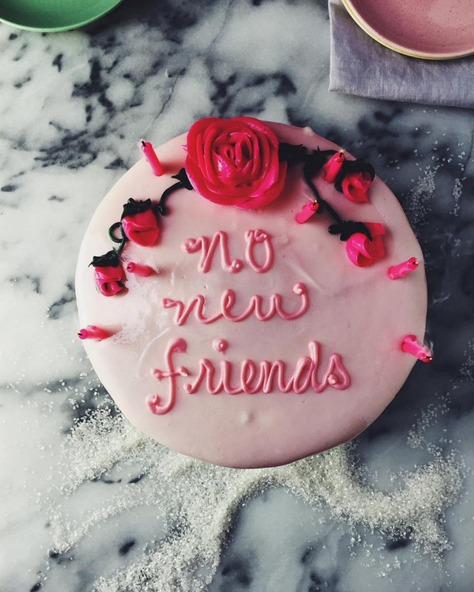 Drake on Cake - No New Friends