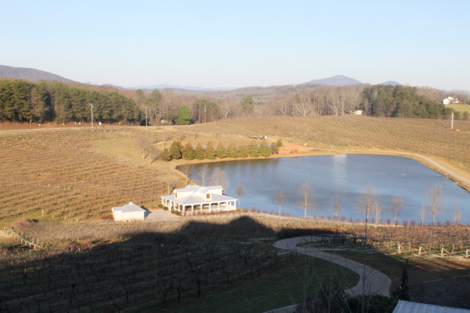 Frogtown Winery and Vineyard