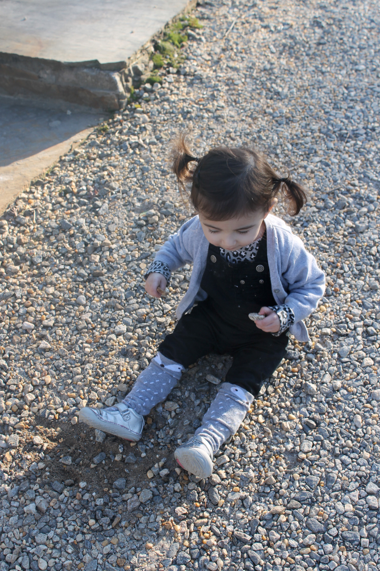 Scarlett Playing with Rocks at Frogtown Winery and Vineyard