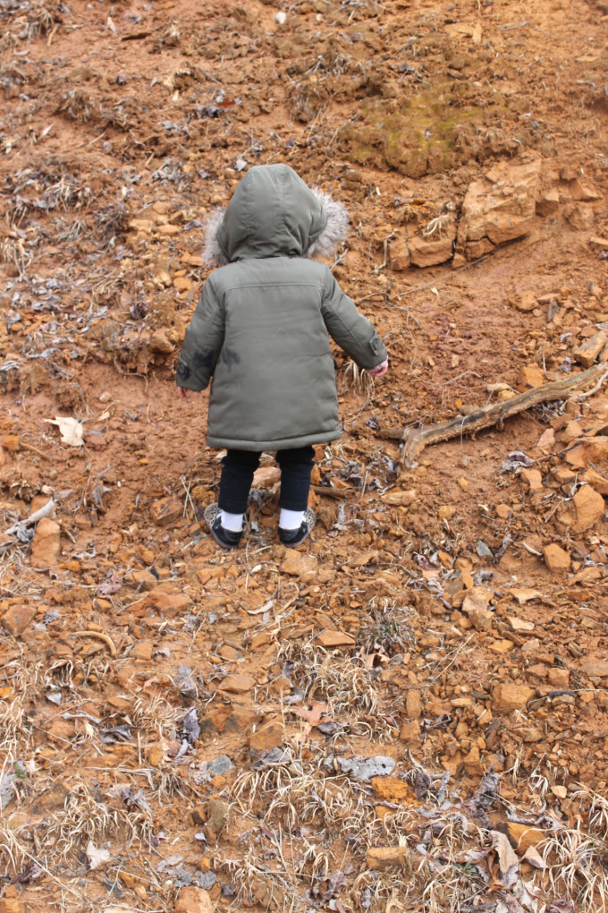 Scarlett Exploring in Burnsville North Carolina