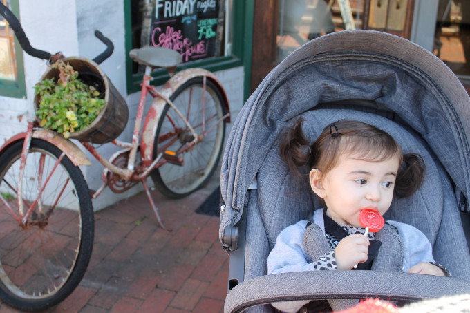Downtown Dahlonega - Scarlett's First Lollipop