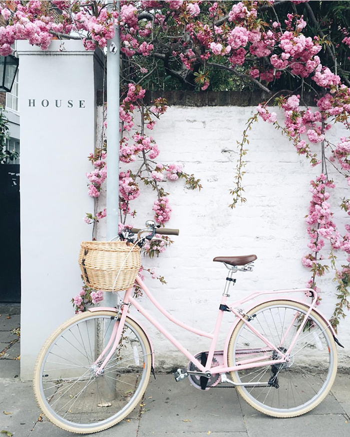 Pink bike and flowers in front of a House. (Plus, a few little love notes to the things I loved most this week.)