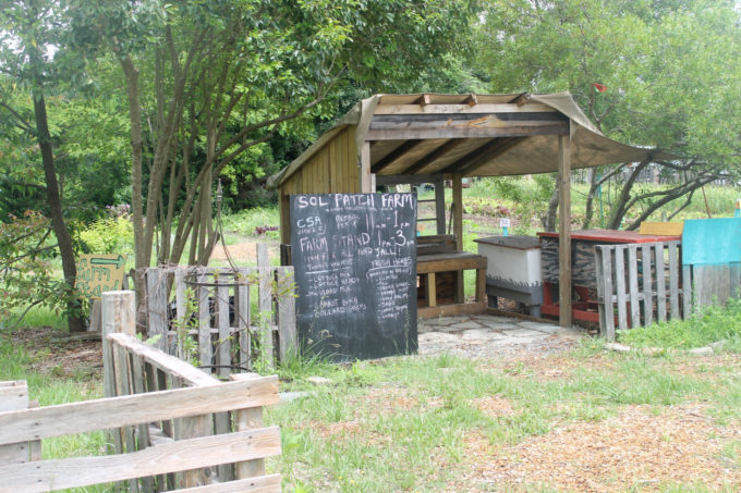 Exploring Durham: Family Fun at Foster's Market and Sol Food Mobile Farm