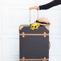 DVF Luggage for Travel - Vacation Style