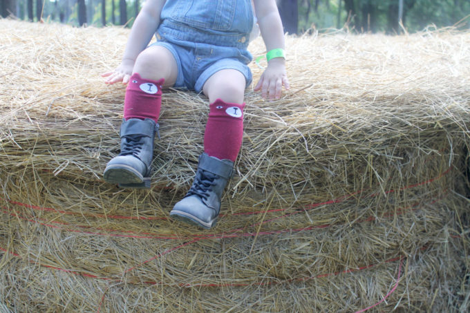 Scarlett's-legs-on-hay