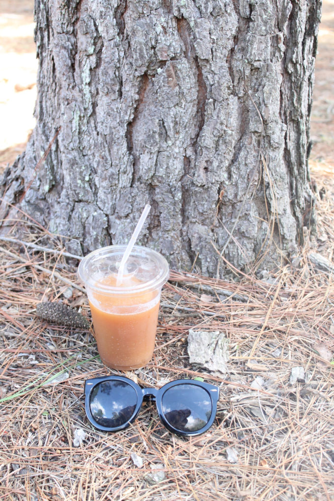 Guide to Millstone Creek Orchards in North Carolina - famous apple cider slushies