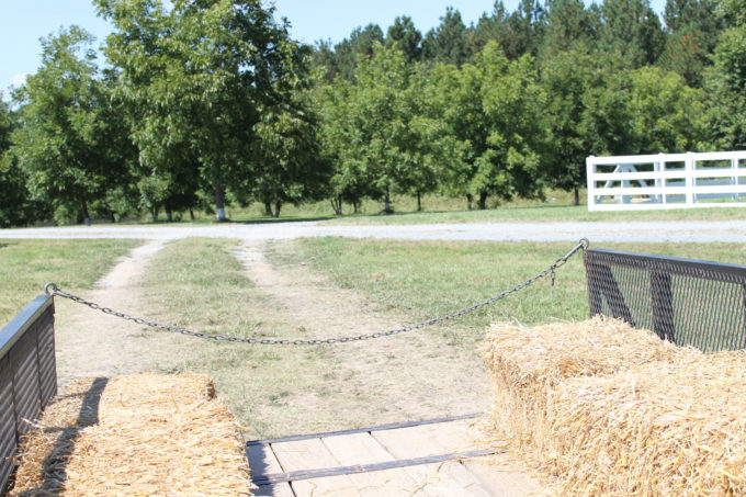 Guide to Millstone Creek Orchards in North Carolina - hayride