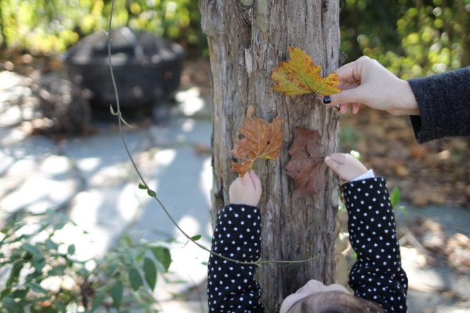 Chapel Hill, NC in the Fall   glitterinc.com   @glitterinc