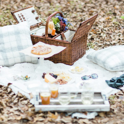 How to Throw a Picnic This Holiday Season