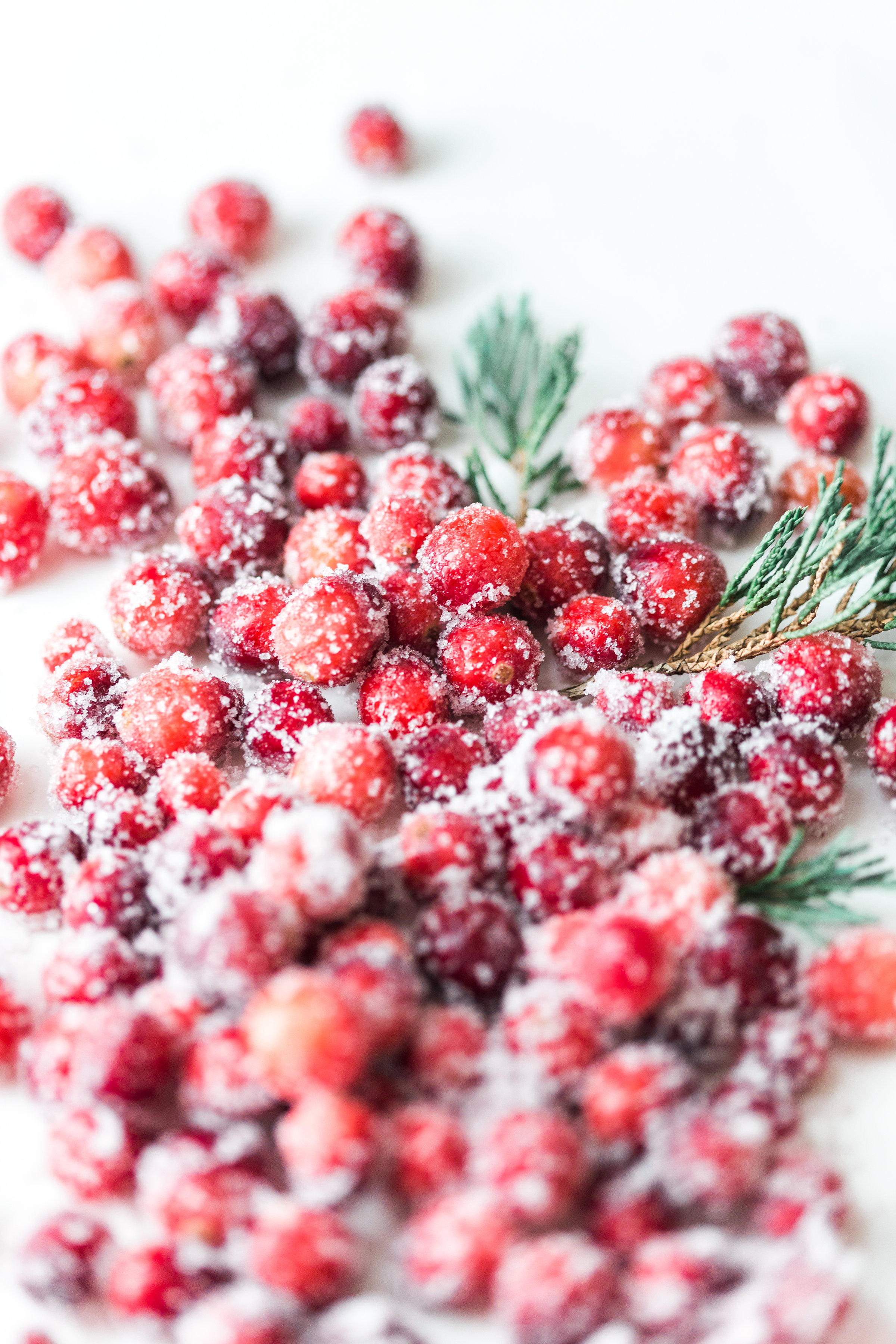 How to make sparkling sugared cranberries for the Holidays that are super simple to make (just two ingredients!) and perfect for dressing up desserts, cheese boards, and cocktails! | glitterinc.com | @glitterinc