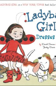 Ladybig Girl Series by David Soman and Jacky Davis