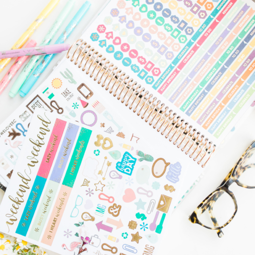 How I Stay Organized With My Erin Condren LifePlanner + Accessories (and an Awesome Giveaway!)