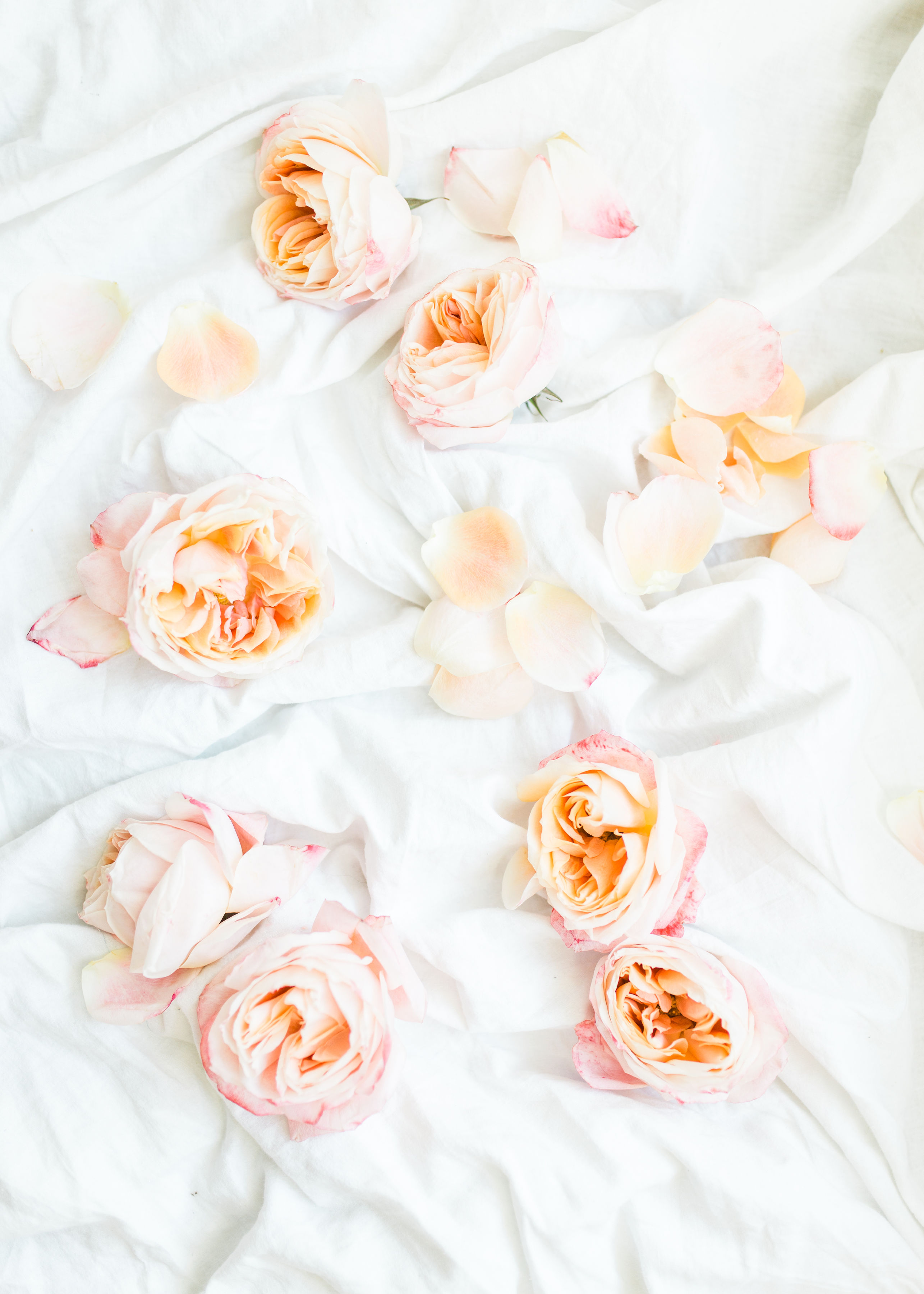 Lifestyle blogger Lexi of Glitter, Inc. shares a few little love notes to the things she loved most this week, including leftover roses from Valentines Day, weekend plans, and so much more. | Click through for the details. | glitterinc.com | @glitterinc