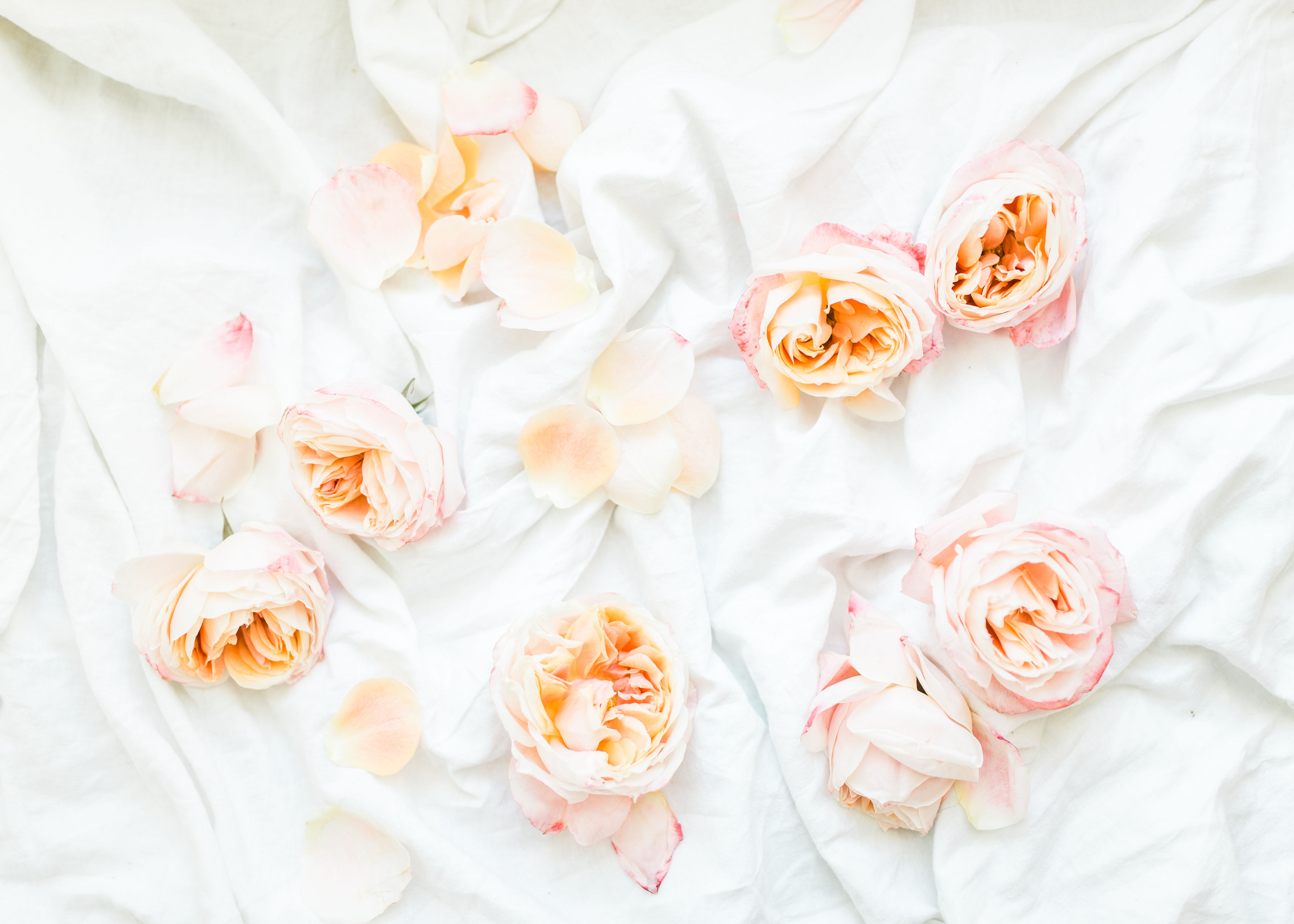 Lifestyle blogger Lexi of Glitter, Inc. shares a few little love notes to the things she loved most this week, including leftover roses from Valentines Day, weekend plans, and so much more.