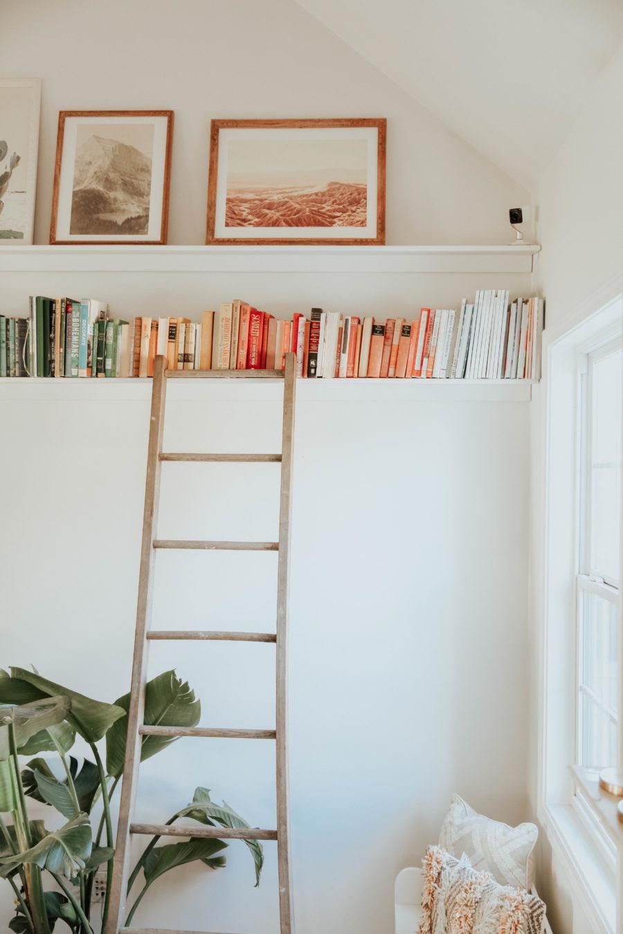 Rainbow Colored Sorted Bookshelves