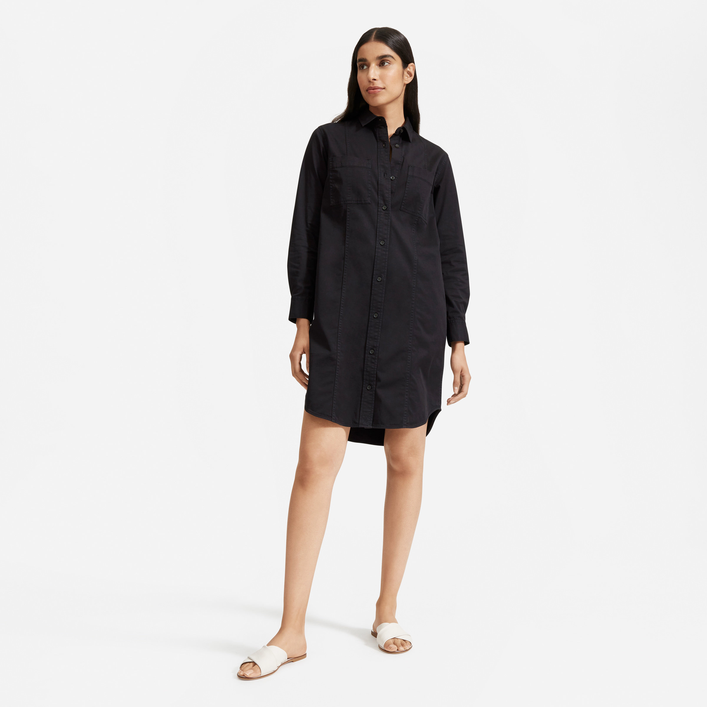 Everlane The Modern Utility Shirtdress, a find