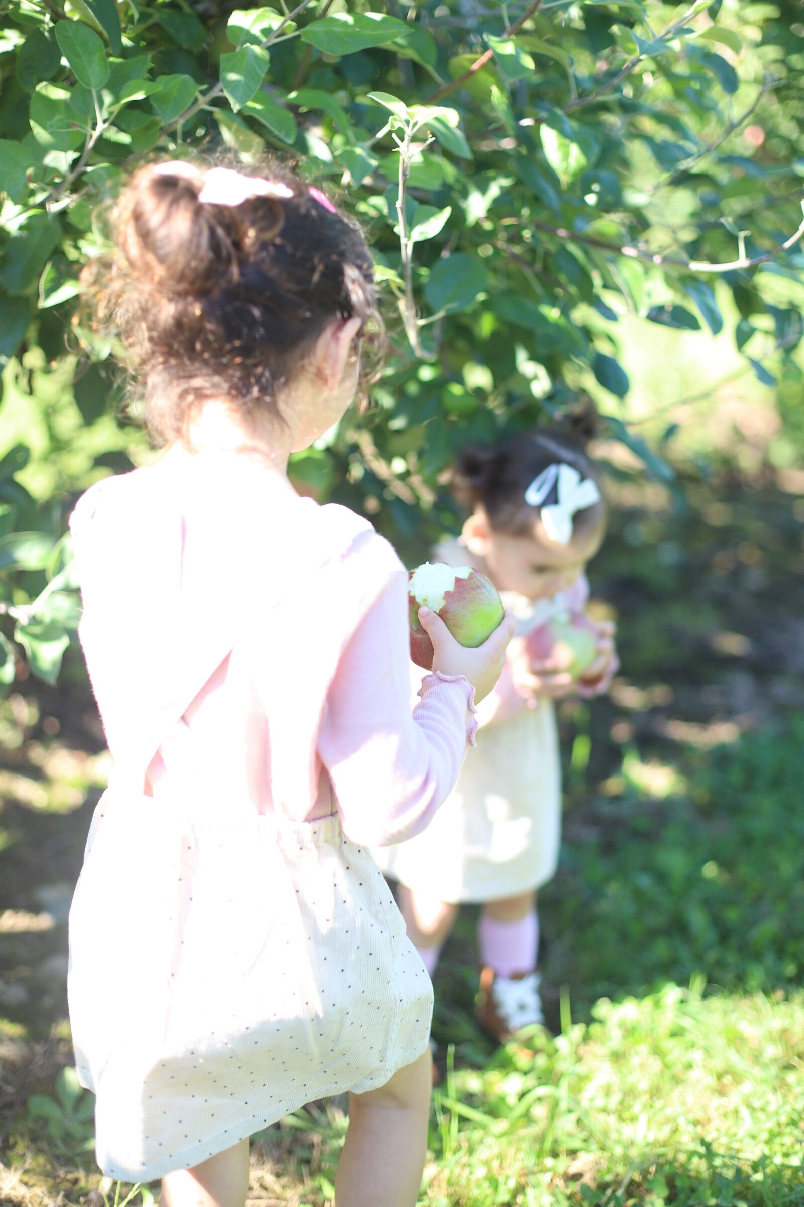 Two little girls eating their freshly-picked apples at Brooksby Farm in Peabody, Massachusetts // Fall Bucket List | glitterinc.com | @glitterinc