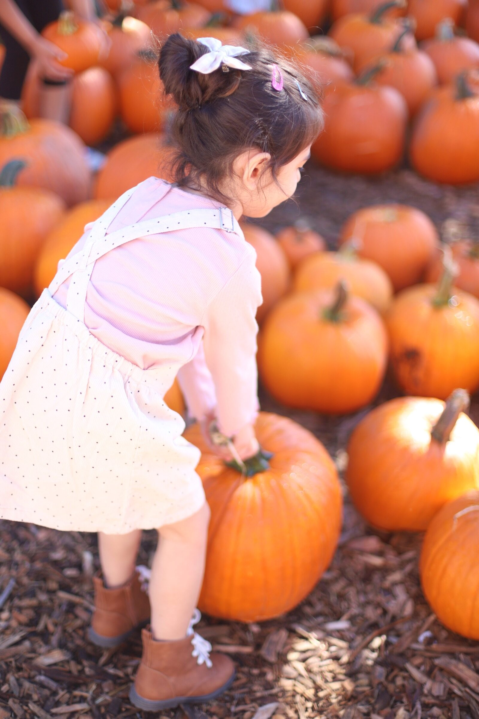 A little girl surrounded by pumpkins during a trip to an apple orchard here in New England, complete with apple picking, barnyard animals, hayrides, and homemade donuts and pie. // Brooksby Farm in Peabody, Massachusetts // Fall Bucket List | glitterinc.com | @glitterinc