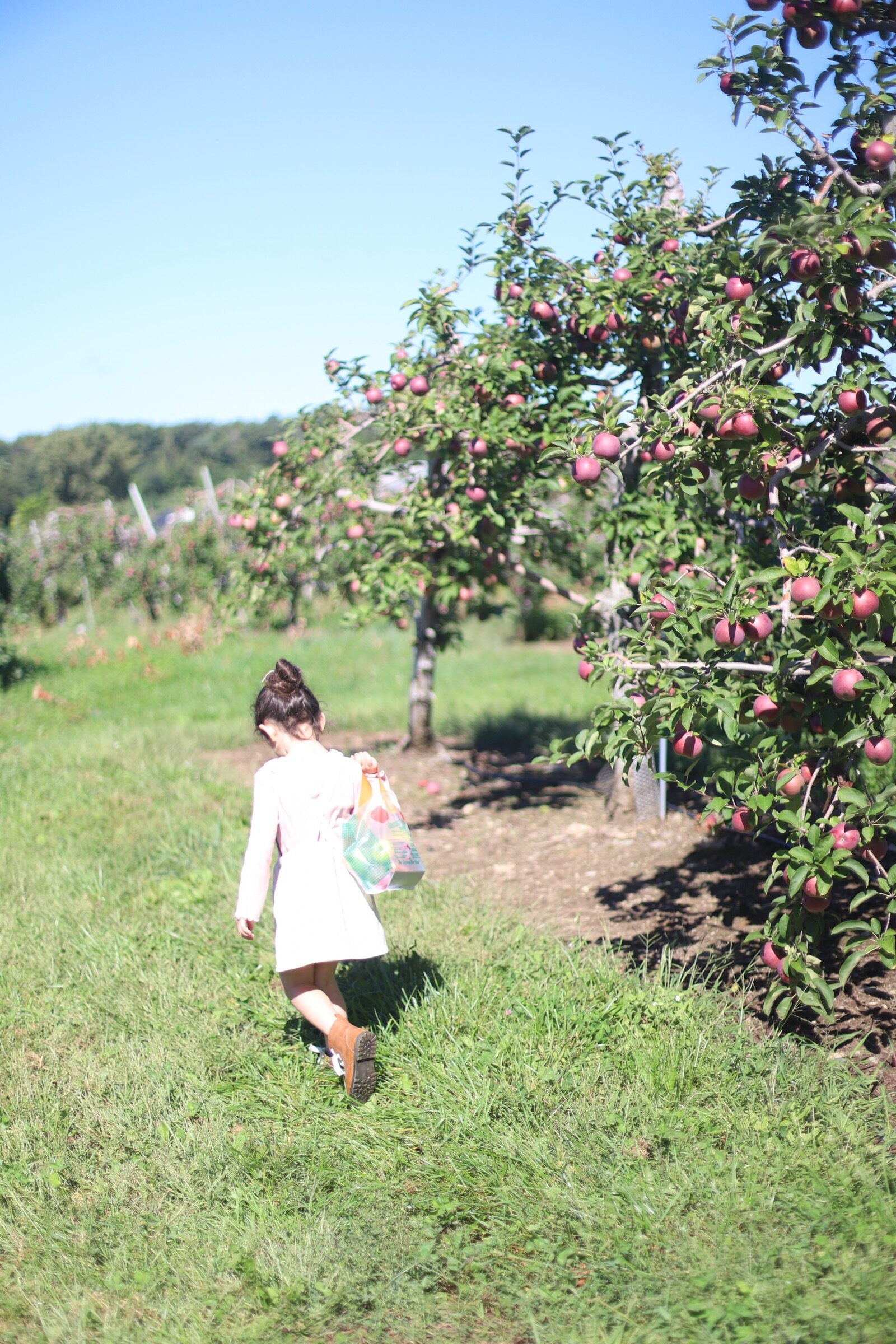 A child with a bag of apples at Brooksby Farm in Peabody, Massachusetts // Fall Bucket List | glitterinc.com | @glitterinc