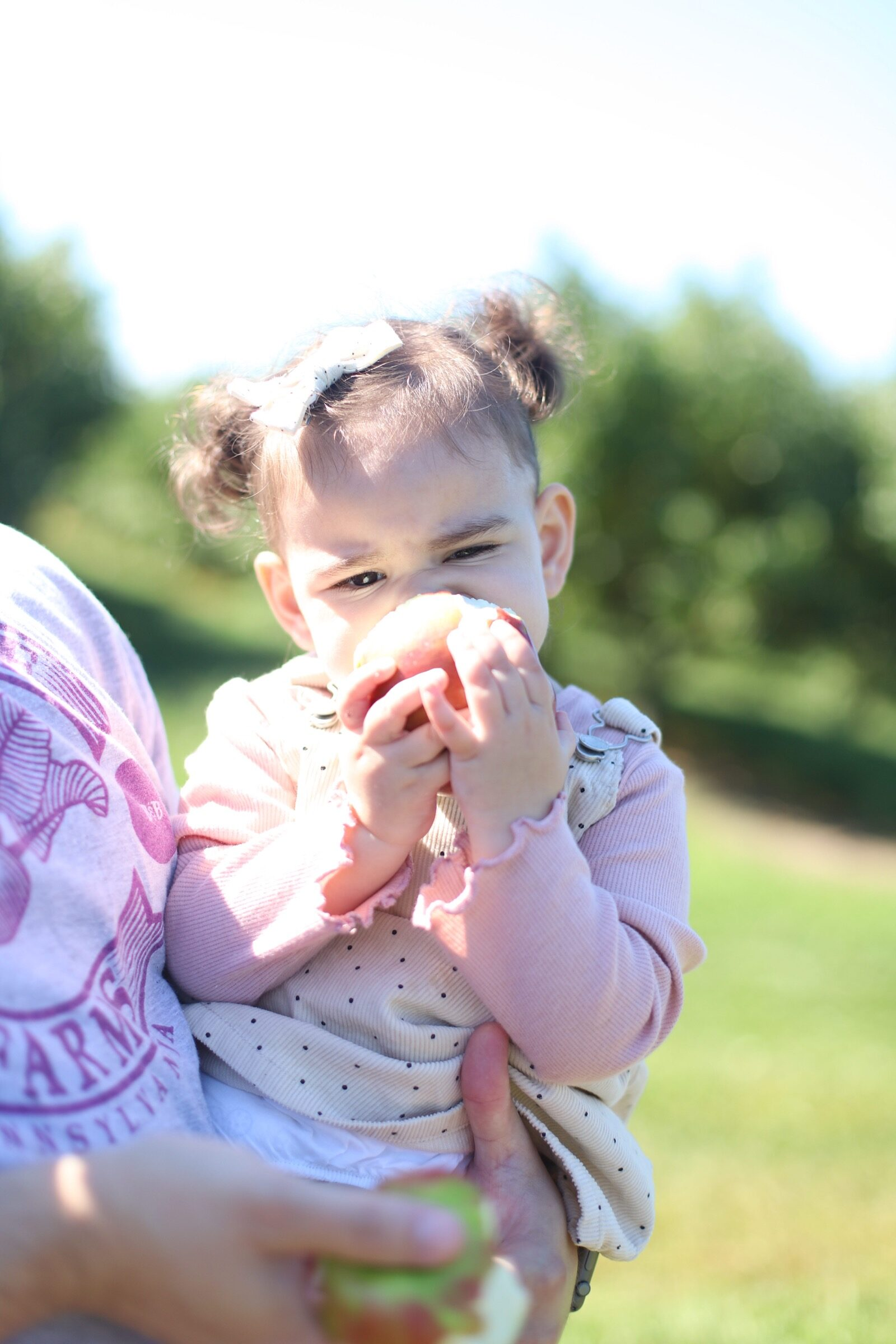 A baby girl biting her apple at Brooksby Farm in Peabody, Massachusetts // Fall Bucket List | glitterinc.com | @glitterinc