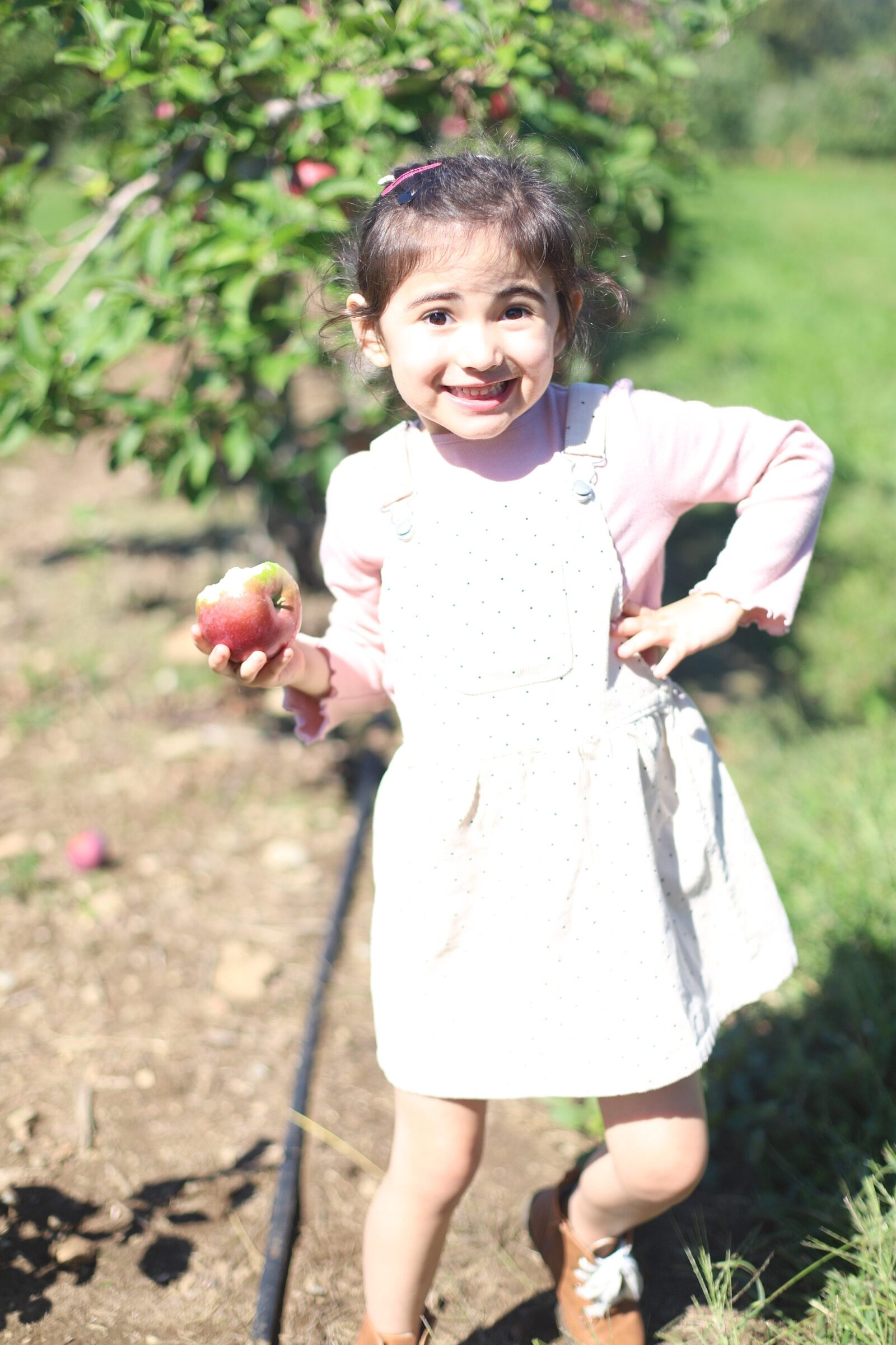 A little girl posing with her apple at Brooksby Farm in Peabody, Massachusetts // Fall Bucket List | glitterinc.com | @glitterinc