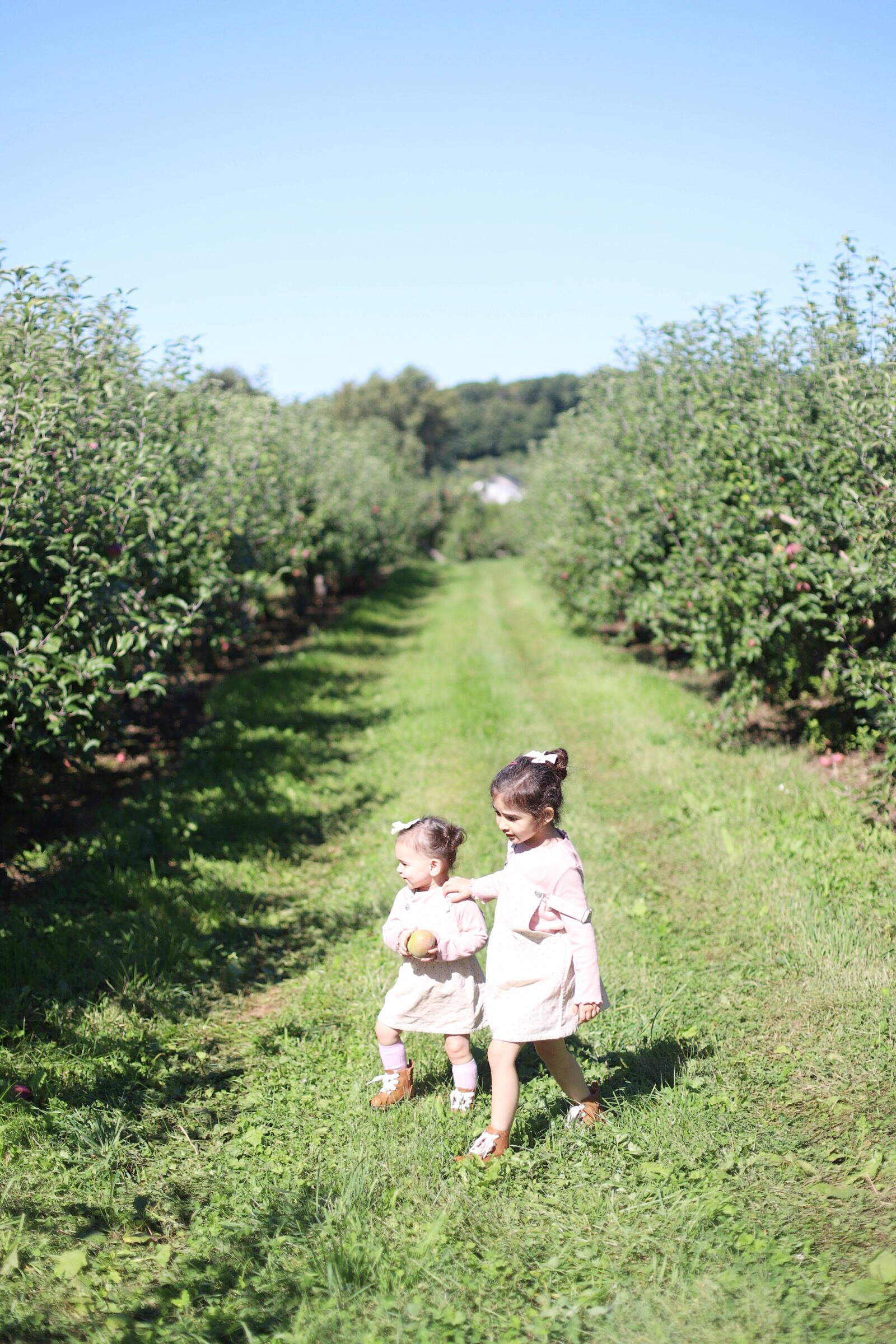 Two little girls at Brooksby Farm in Peabody, Massachusetts // Fall Bucket List | glitterinc.com | @glitterinc