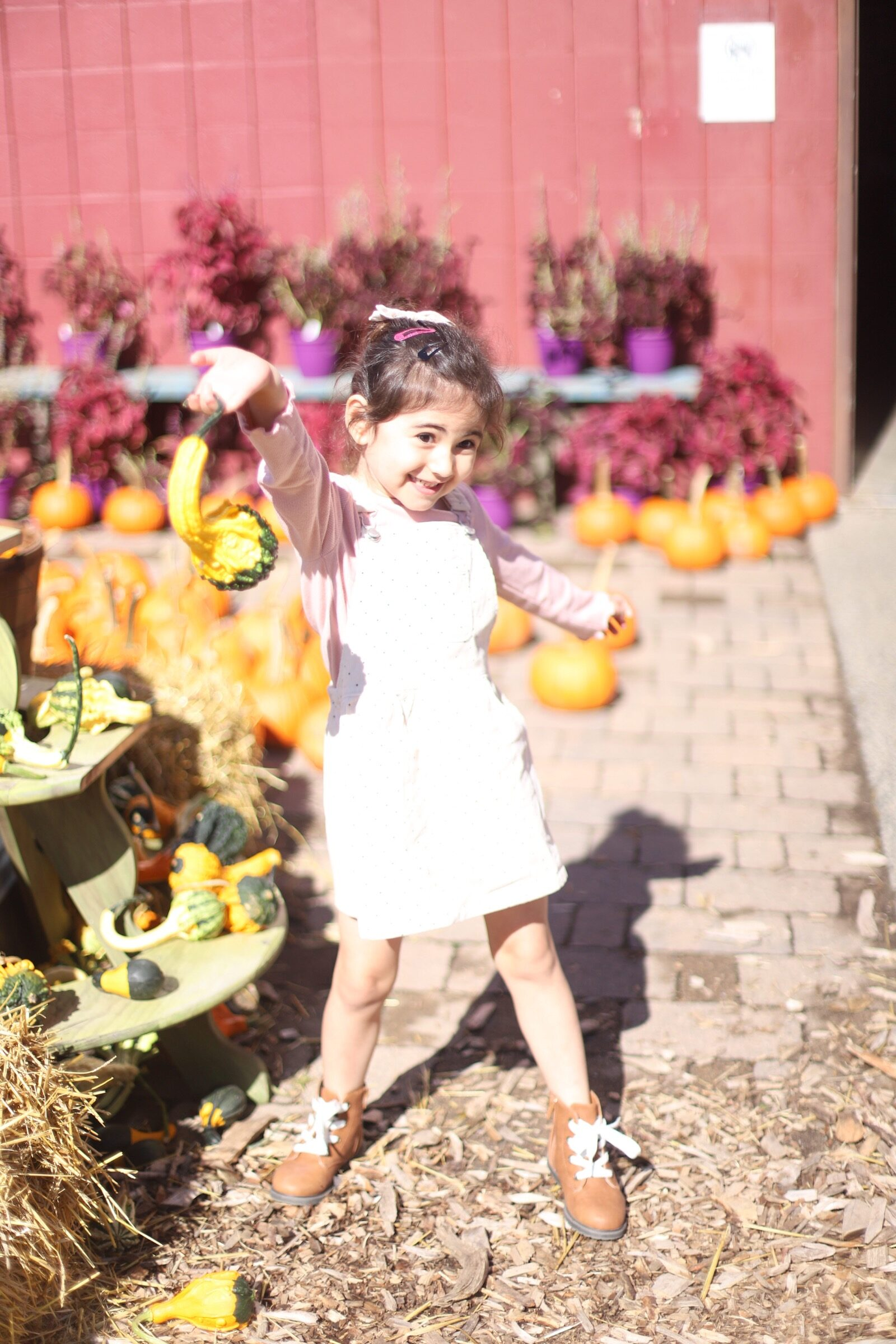 A little girl posing with pumpkins during a trip to an apple orchard here in New England, complete with apple picking, barnyard animals, hayrides, and homemade donuts and pie. // Brooksby Farm in Peabody, Massachusetts // Fall Bucket List | glitterinc.com | @glitterinc