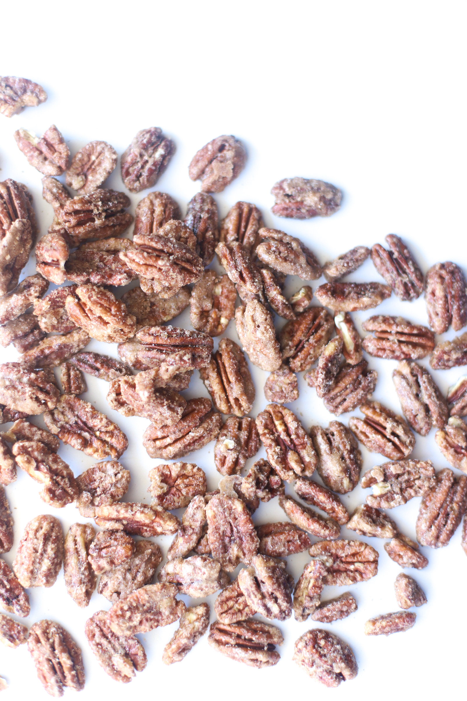 Candied Pecans are sweet, crunchy, and perfect for holiday parties and homemade gifts! These cinnamon-sugar roasted and spiced nuts are also super easy to make, especially in big batches. Click through for the recipe. | glitterinc.com | @glitterinc