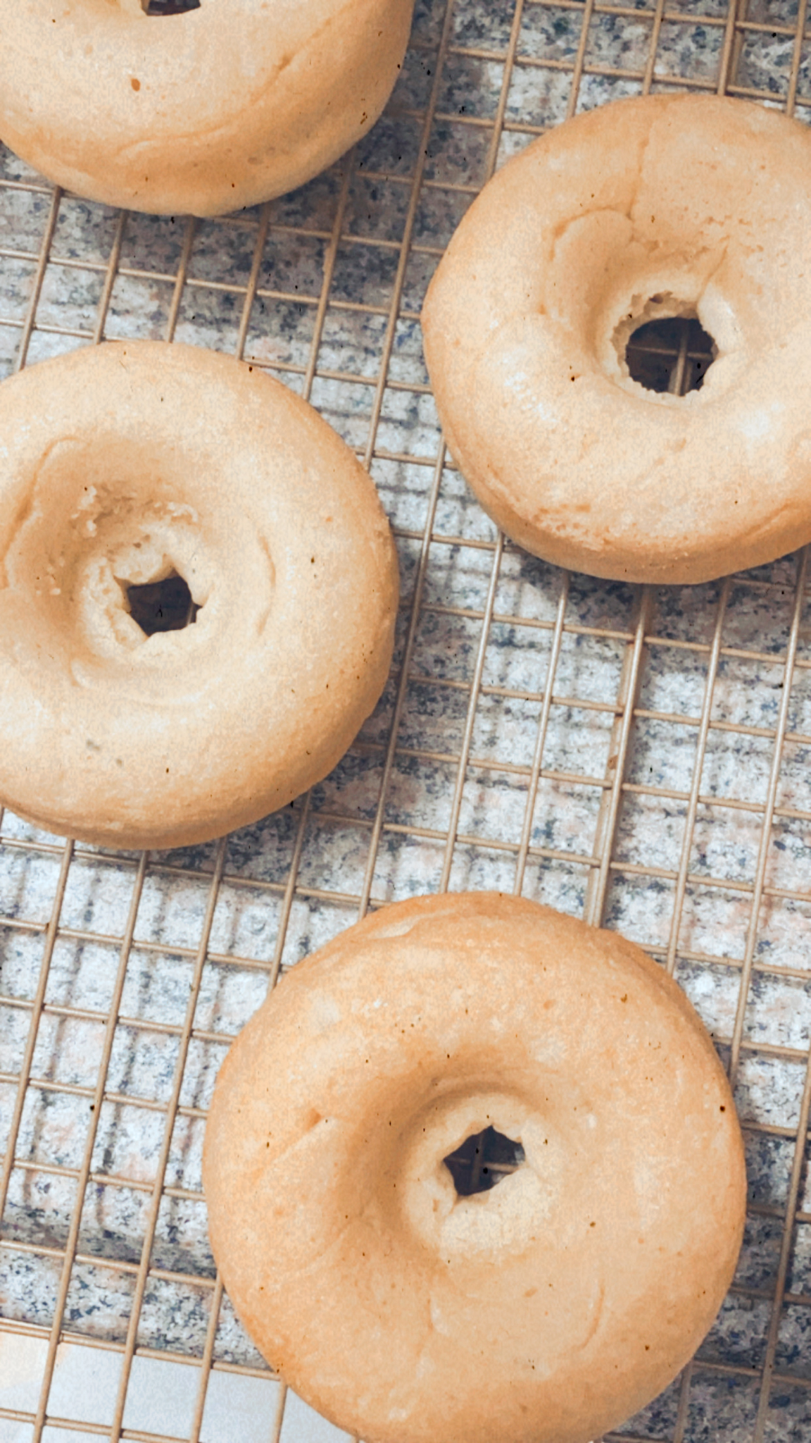 Totally fluffy, soft, moist, and amazingly dairy-free, you would never know that these crowd-pleasing donuts are vegan, and baked, to keep this delicious dessert a little healthier. These baked vegan vanilla donuts are the perfect treat for birthday parties, holidays, gifting, bake sales, and more! Click through for the recipe. | glitterinc.com | @glitterinc