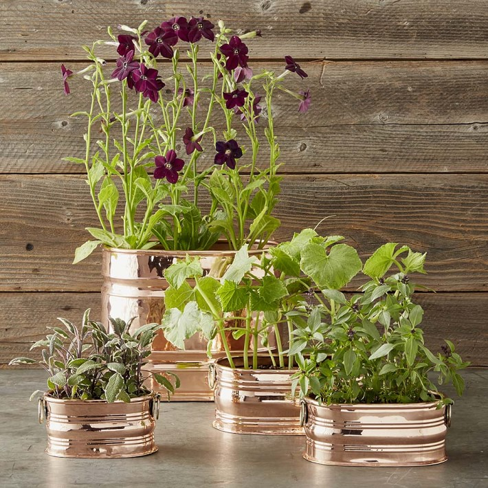 Williams Sonoma Copper Oval Ribbed Planters