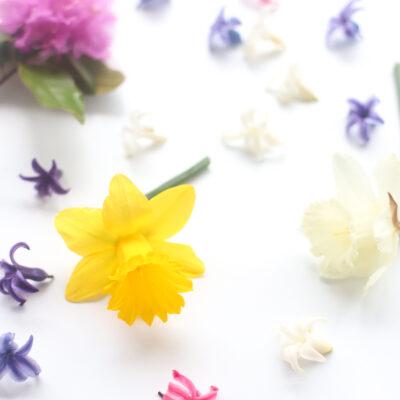 Spring Flowers - GLITTERINC.COM
